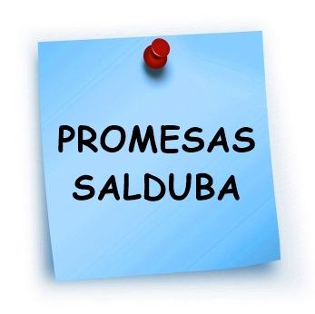 SALDUBA